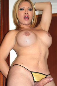 Barbara Laya (t)