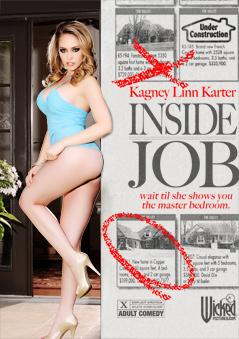 Inside Job DVD