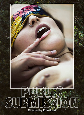 Public Submission DVD