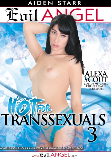 Hot For Transsexuals #03 DVD