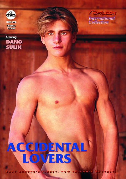 Accidental Lovers DVD