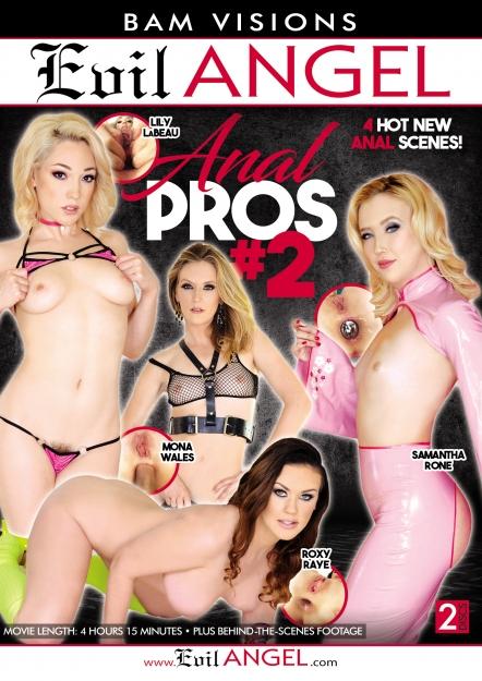 Anal Pros #02