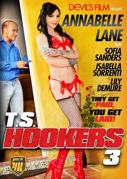 TS Hookers #03 DVD