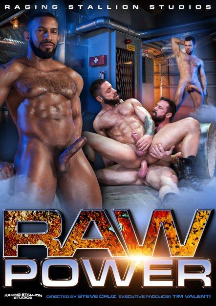 Raw Power DVD