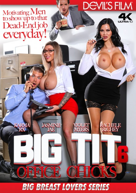 Big Tit Office Chicks #06 DVD