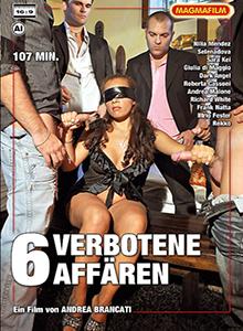 6 verbotene Affären DVD