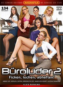 Büroluder 2 - Ficken, lochen, abheften ! DVD