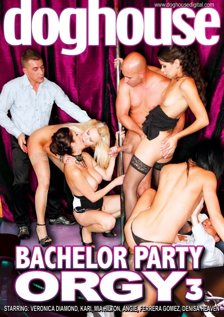 Bachelor Party Orgy #03