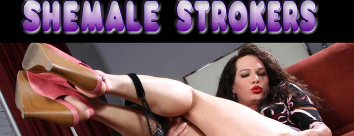 Shemale Strokers Vids 46