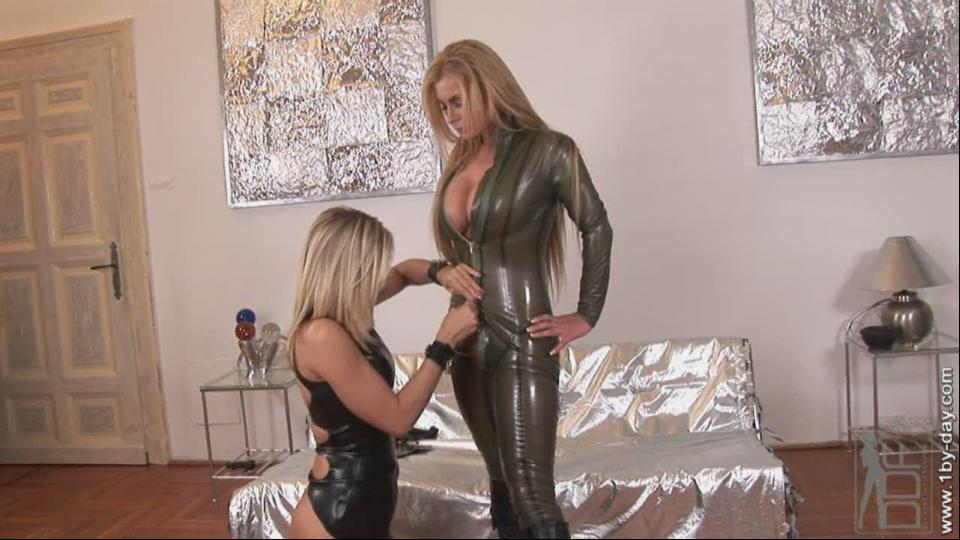 Busty blonds in leather