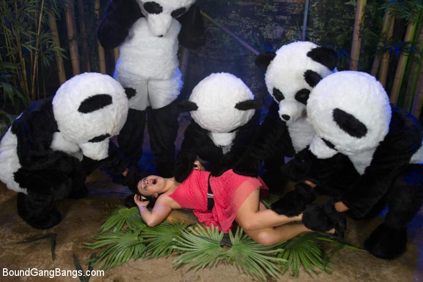 PANDAMONIUM!!! PANDA LULLABY!!!