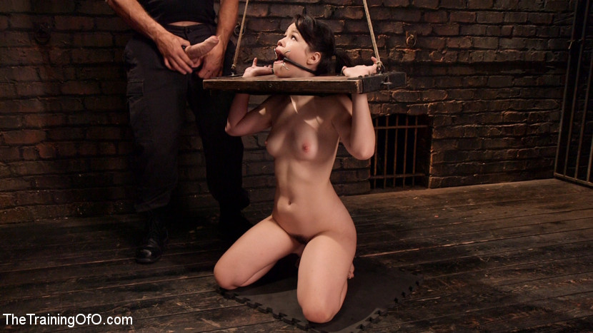Slave Training: Tied Tight and P