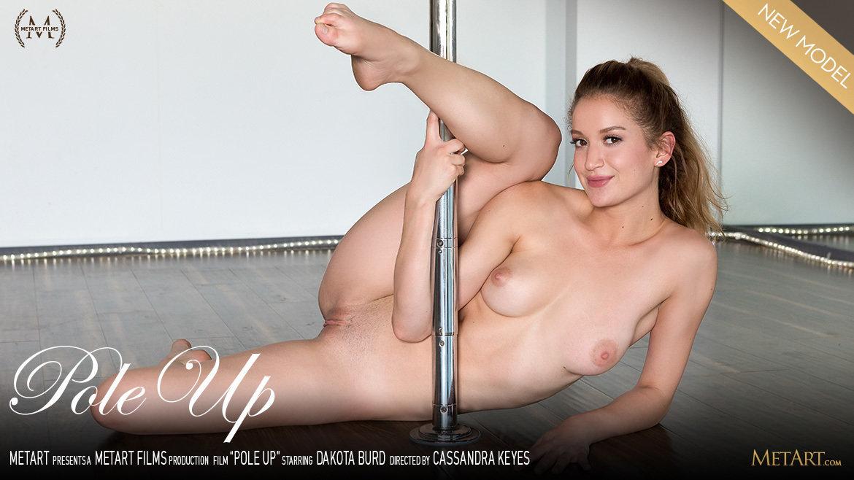 Pole Up
