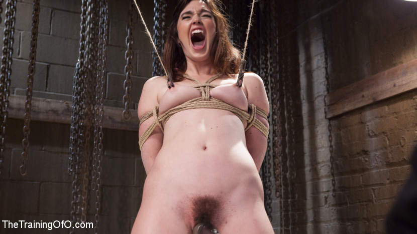 Jodi Taylor and the Slave Traine