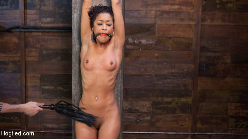 Skin Diamond is Tormented in Bru