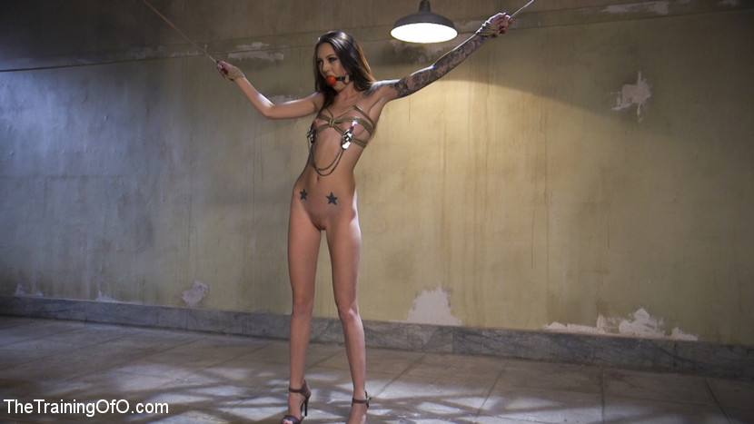 Slave Training Kendra Cole