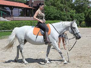 Riding lessons Scène 1