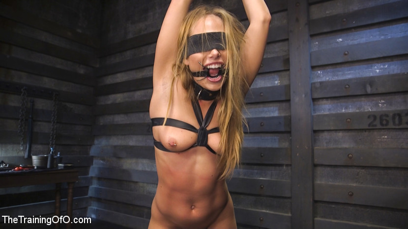 Training of Carter Cruise Day 2!