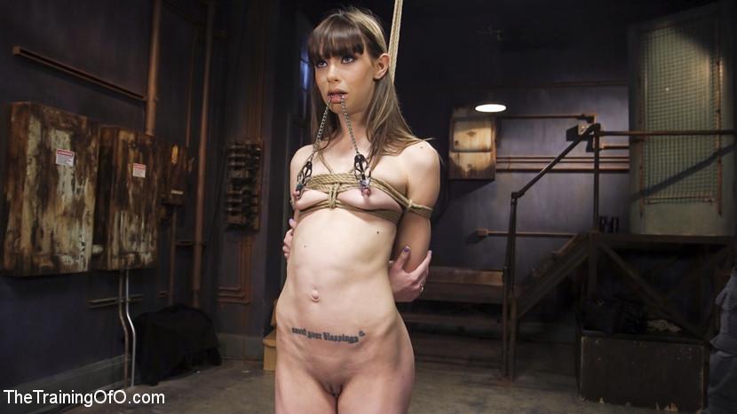 Anal Bondage Slave Training Alex