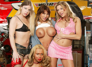 Best Of Transsexuals All-Girl Ed
