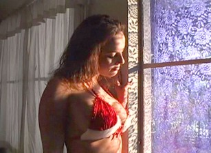 Whores In Heat #07 Escena 4