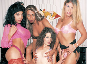 Transsexual Gang Bangers #09