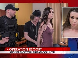Operation Escort - Case 002 - Ariel Grace