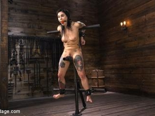Joanna Angel: Tattooed Slut Made to Cum in Gruelin