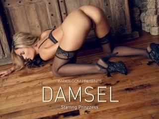 Prinzzess in Damsel