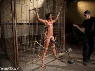 The Training of Cassandra Nix, Day Four