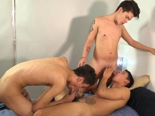 Cedric, Nestor and Wilson