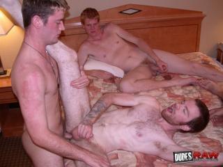 Vennue Longhorn, Shawn Phoenix, Acheron Krosser, C