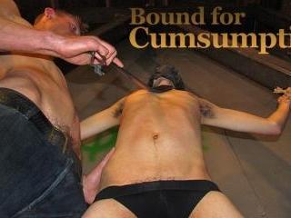 Bound for Cumsumption