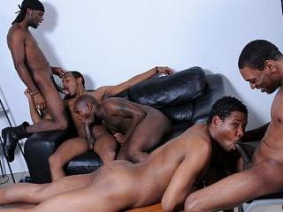 Mr Wayne, Kash, Young Buck, Brooklyn Bounce & Intr