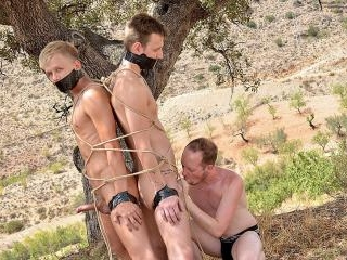 2 Young Captive Cocks To Use - Chris Jansen, Reece