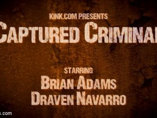 Captured Criminal: Hard Working Stud Gags & Punish