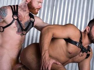 Ginger Bred