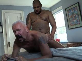 Ebony Robert Breeds Daddy Stew