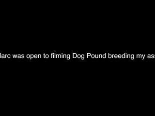 Dog Pound with Marc Thomson, Damon Dogg