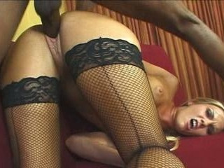 A Sex Vixens Crash Course In The Life Of A Dick